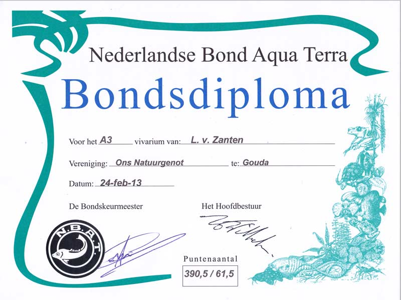 Diploma 2013 (district)